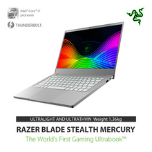 Load image into Gallery viewer, Razer Blade Stealth 13 - RZ09-031