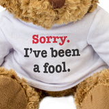 Sorry I've Been a Fool Teddy Bear Apology Gift