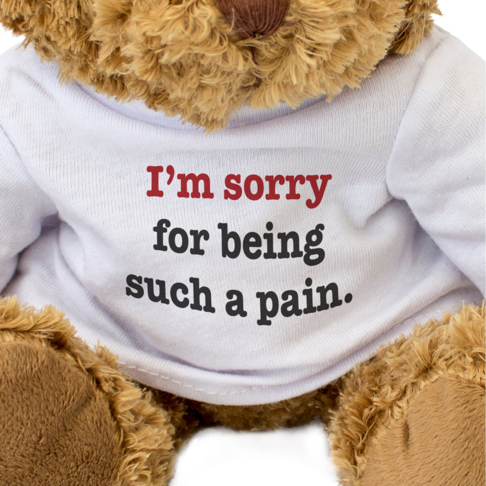 Sorry For Being Such A Pain Teddy Bear Apology Gift