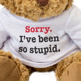 Sorry I've Been So Stupid Teddy Bear Apology Gift