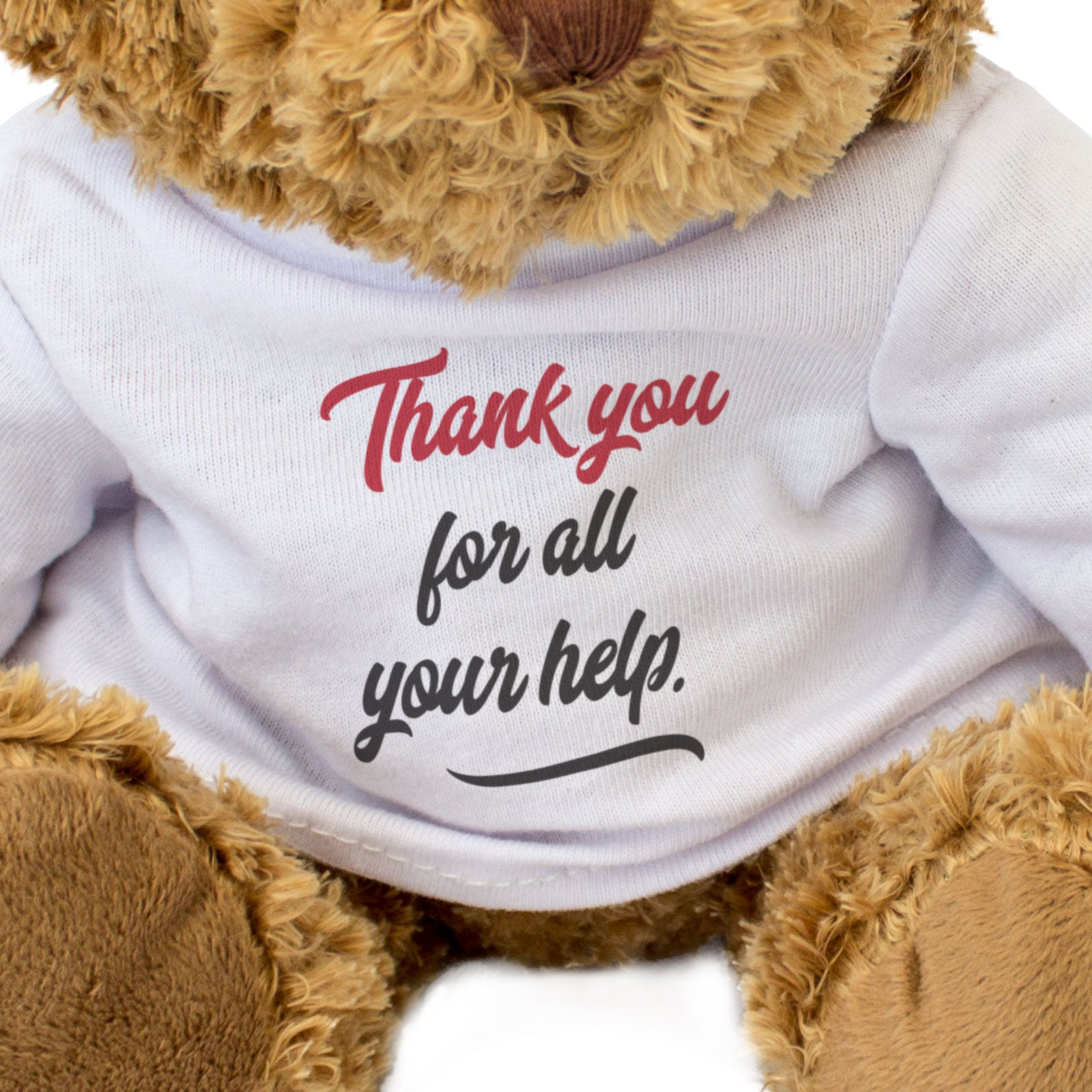Thank You For Your Help Teddy Bear Appreciation Gift