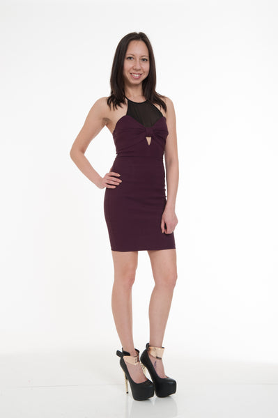 Burgundy Eggplant Sexy Mini Dress