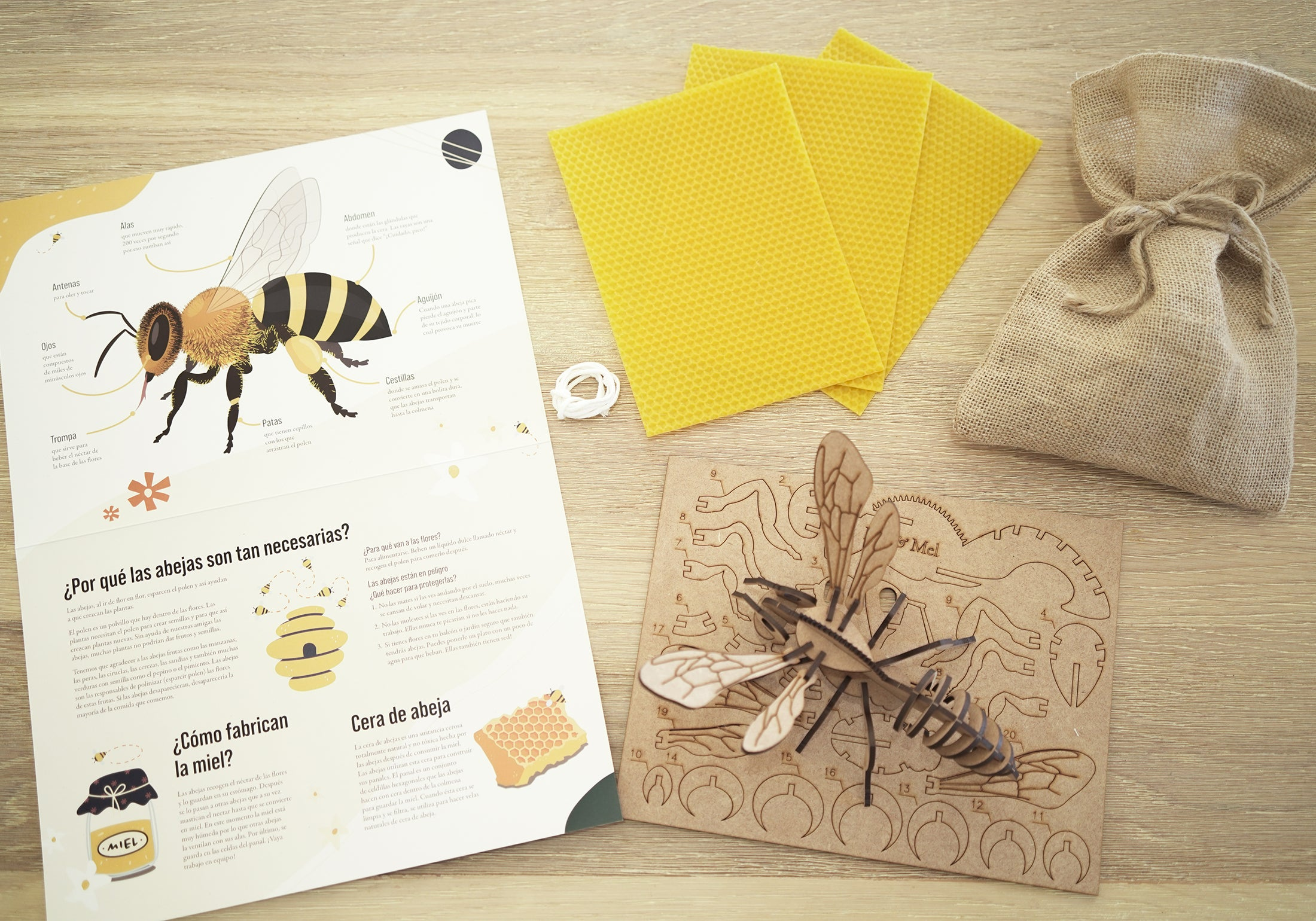 Make honeycomb candles and a 3D bee puzzle