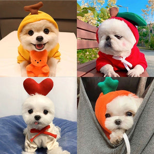 Winter Dog Clothes Cartoons fruit Cute dog Hoodie coat outdoor warm Puppy Small Medium Dogs Pet clothes Christmas Chihuahua