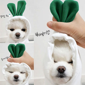 Early Autumn New Radish Pet Sweater Teddy Hoodie Bichon Hiromi VIP Cat Puppies Small Dog Clothes