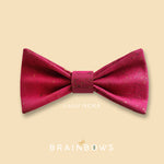 hot pink cork bow tie