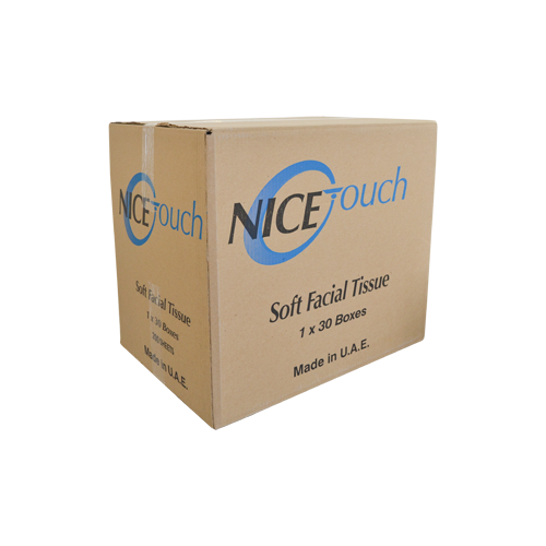 Nice Touch Facial Tissue 200 Sheets | Pack of 30