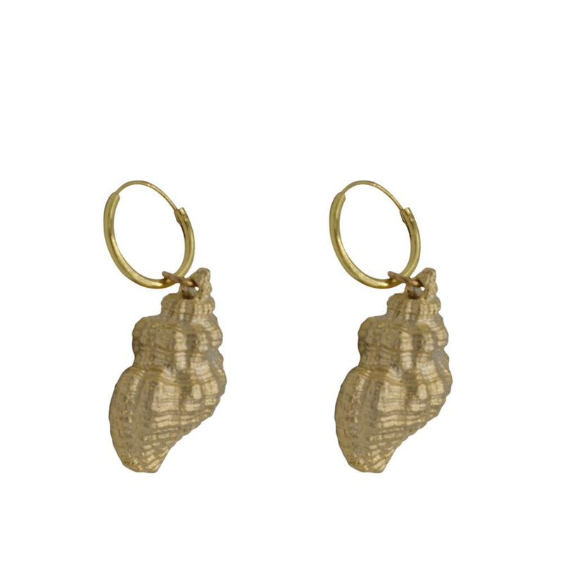 Shell 3D pair of earrings