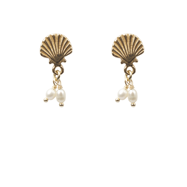 Shell with freshwater pearls pair of earrings