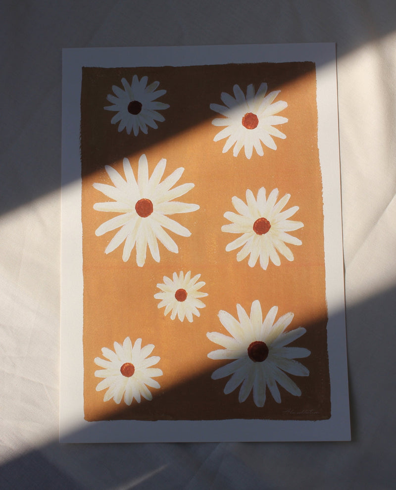 Daisy flowers A4 poster