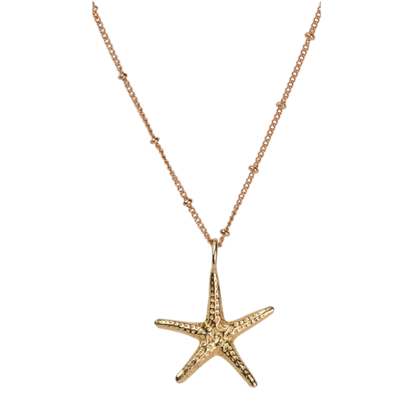 Big starfish necklace
