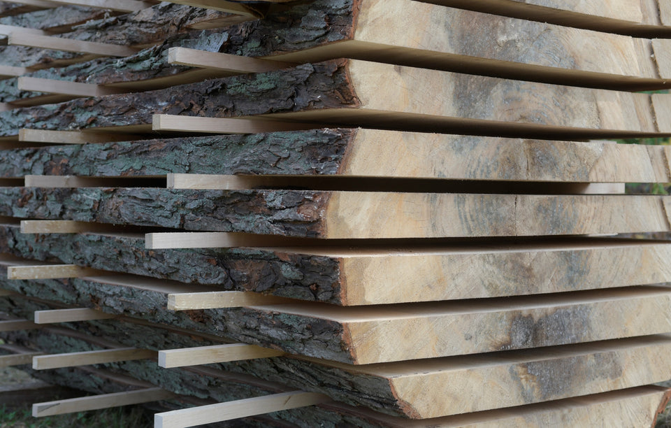 Live edge slab lumber for sale in Maine. Silver maple slab lumber, Gardiner, Maine.