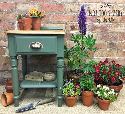 Bayberry painted ducal pine side table with plants