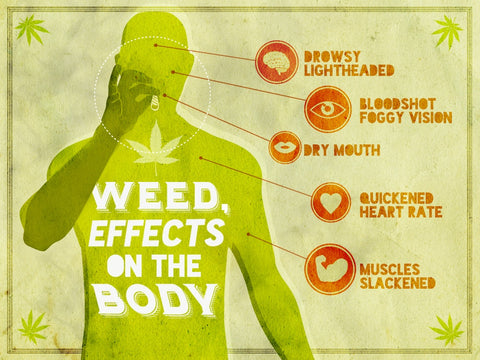 Effects Of Weed On The Body