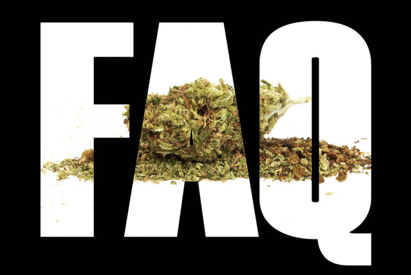 weed guide for beginners