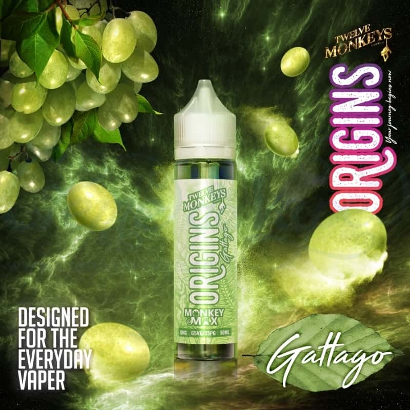 12 Monkeys - Origins - Gattago - 60ML
