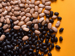 Pinto and Black Beans spread in a table