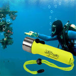 Professional Diving Flashlight - Indigo-Temple