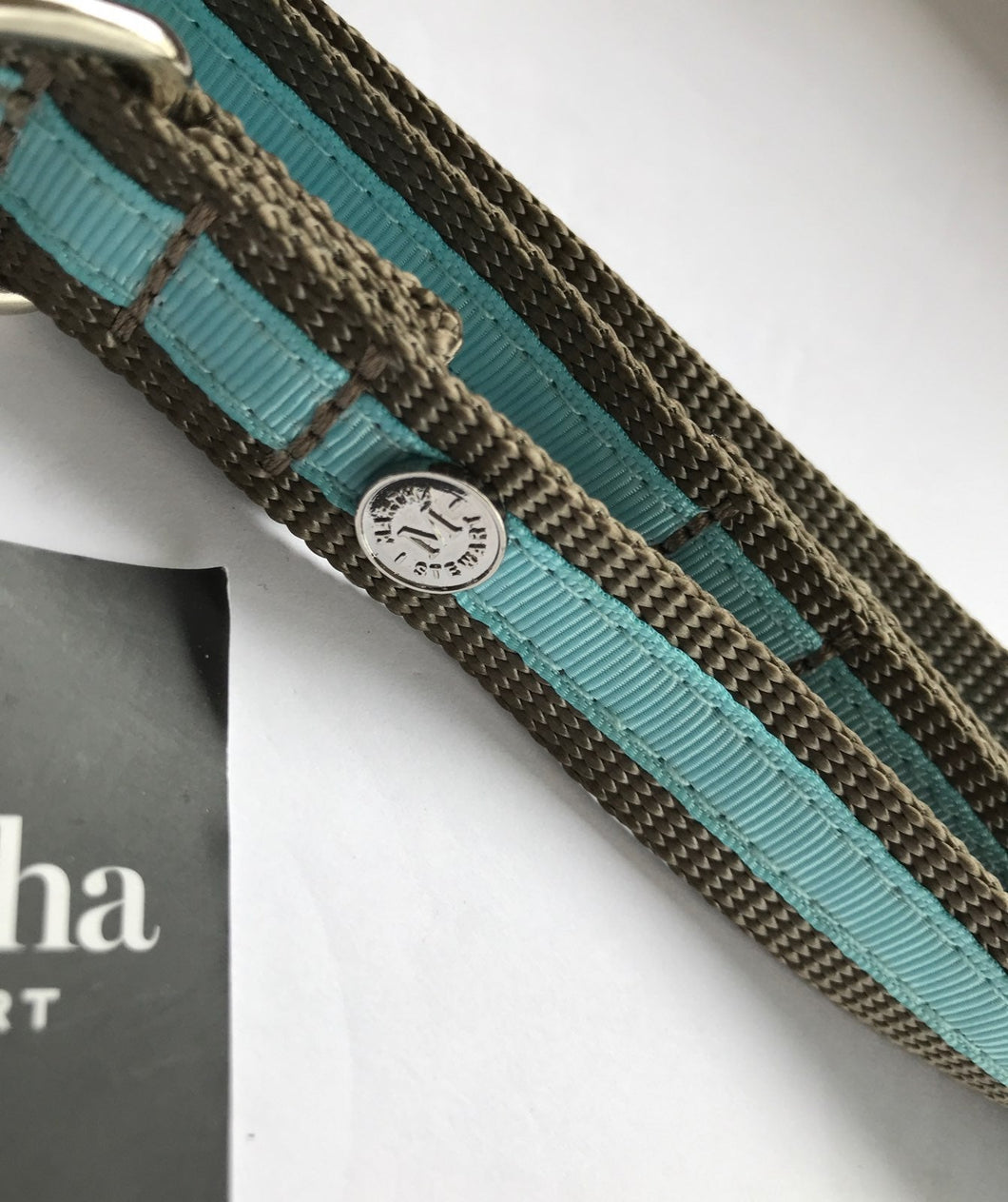 Martha Stewart Dog Collar Blue 16