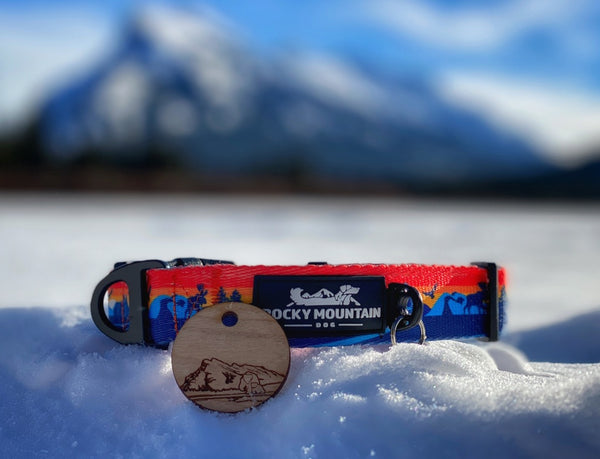 rocky mountain dog collar and pet id tag combo