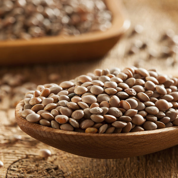 Lentils Green Brown 500g