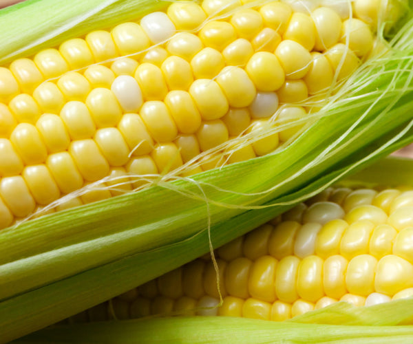 NZ Fresh Sweetcorn Ea