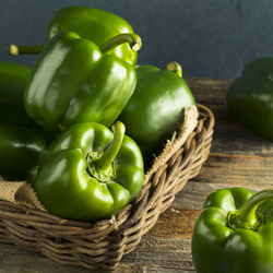 Capsicums Green 3pc Pack each