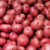 Potatoes Red washed loose