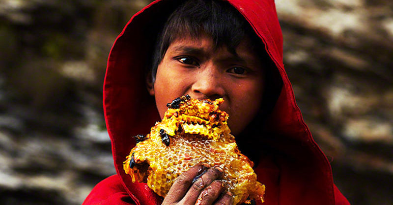a child eating mad honey