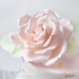網上訂購Phoenix Sweets Fondant Cake - Sugar Rose 結婚 甜點檯 回禮小禮物 伴手禮 Order Phoenix Sweets Fondant Cake - Sugar Rose to celebrate wedding candy corner dessert table souvenirs Cake, Elegant Ladies, Featured Products, Fondant Cake, Online Store, Rose, Sugar Flower, Wedding