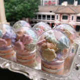 網上訂購Phoenix Sweets Rainbow Meringue 散水餅 轉工 Order Phoenix Sweets Rainbow Meringue for goodbye gift Cookie, Goodbye Gift, Party Sweets, Wedding