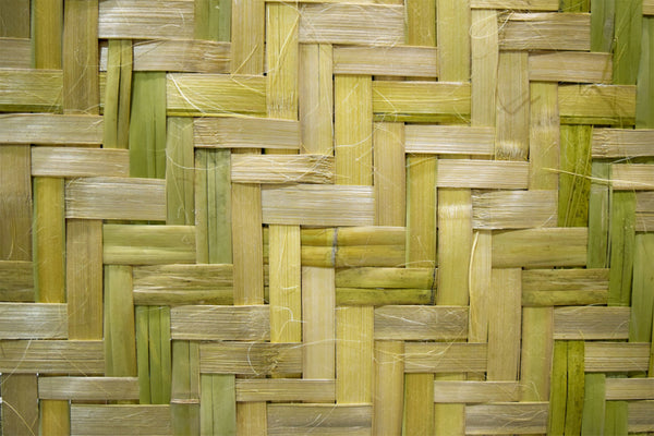 Bamboo sheets are made from this bamboo