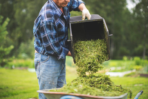 mowings cuts into compost pile