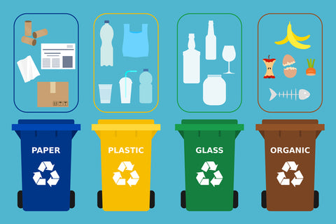 Infographic of common recyclable items