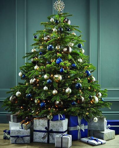 Christmas Decorating Booking, Christmas Tree decorated with ornaments, gifts under the tree
