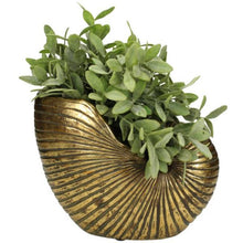Load image into Gallery viewer, Planter Shell - Gold
