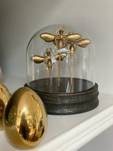 Load image into Gallery viewer, Gold Butterfly Trio Cloche