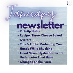 January 2021 Newsletter & Updates