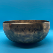 "Load image into Gallery viewer, 10"" Moon Hammered Bowl"