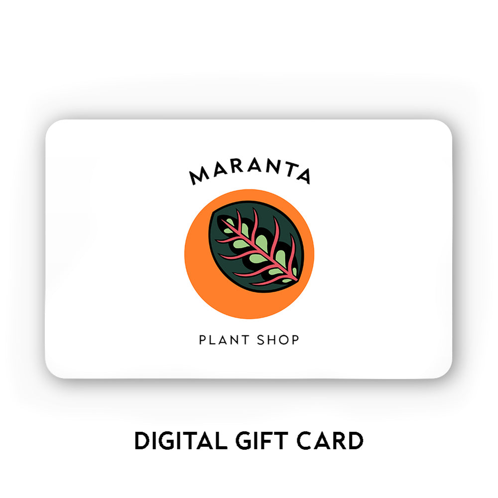 Load image into Gallery viewer, Maranta Gift Card