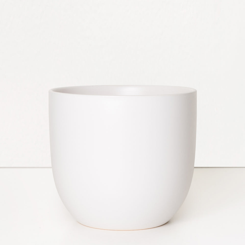 Load image into Gallery viewer, Ceramic Planter (White)