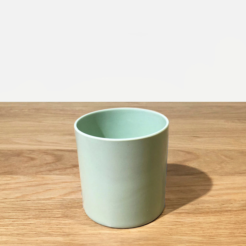 "Load image into Gallery viewer, Maranta Hue Plastic Pot 6"" (Green)"