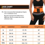 ZSZBACE Waist Trainer Belt for Women - Waist Cincher Trimmer - Slimming Body Shaper Belt - Sport Girdle Belt