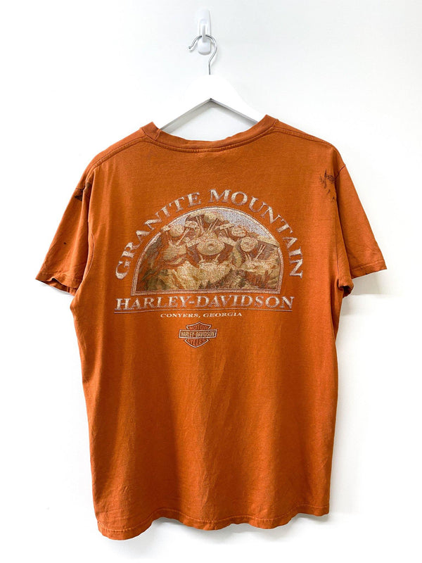 Harley Davidson Granite Mountain Tee (M) - Planet Vintage Store