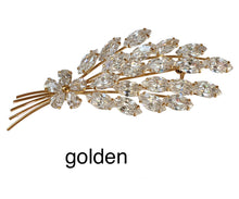 Load image into Gallery viewer, brooch0066