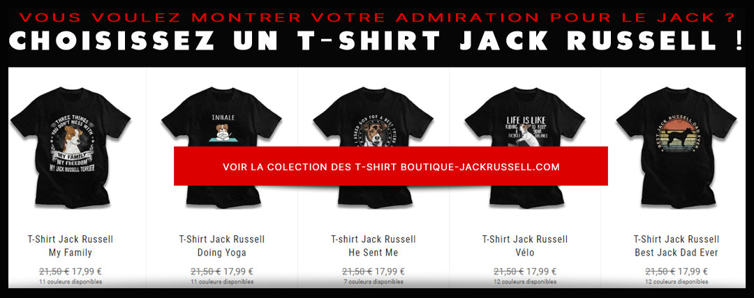 Lien Collection Tshirt -15% - Boutique Jack Russell