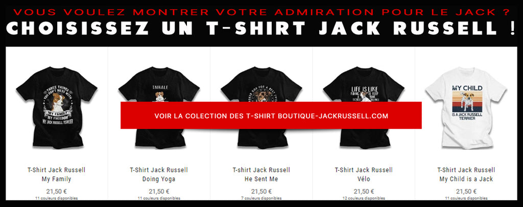 Lien Collection Tshirt - Boutique Jack Russell
