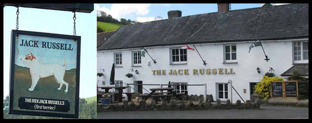 Pub Jack Russell - Boutique Jack Russell