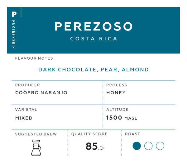 Perezoso, Costa Rica Coffee Label | Specialist coffee by Saint Coffee Roasters