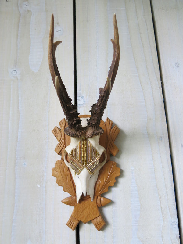 Antique Gold Beaded Roe Deer Skull